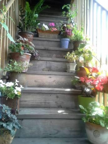 back desk garden